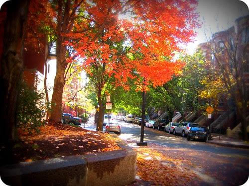 New England really does do Fall right.