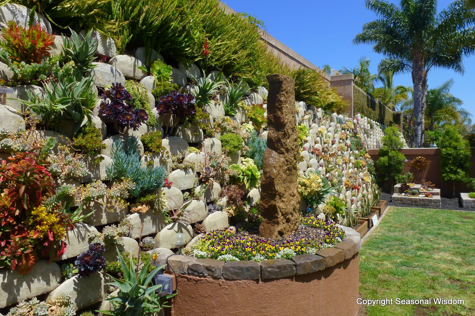Raised Bed Succulent Gardens Home Designs Inspiration