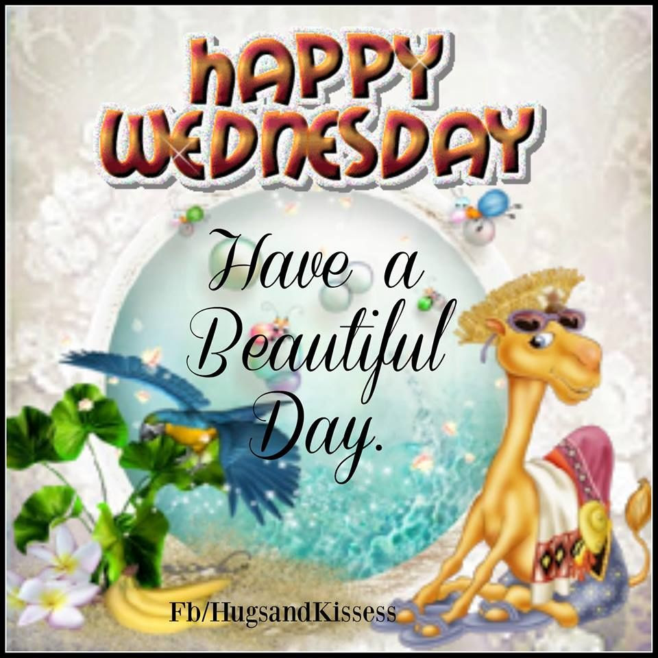 Happy Wednesday Hope You Have A Beautiful Day Pictures Photos And