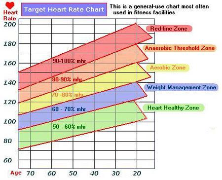 body fat percentage zones