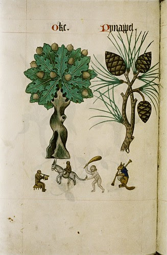 Oak and Pine. Ape with pipe, drum. Smaller ape on donkey. Naked bearded man on donkey holding club. Blue-caped fox plays bagpipes.