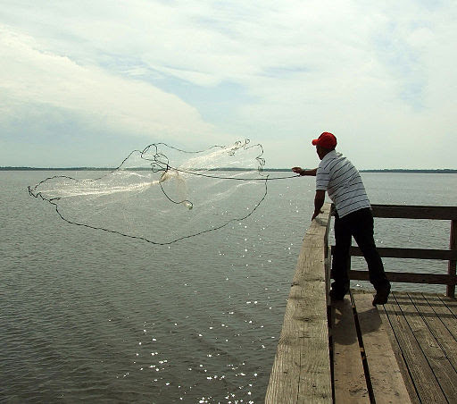 A fisherman casting a net