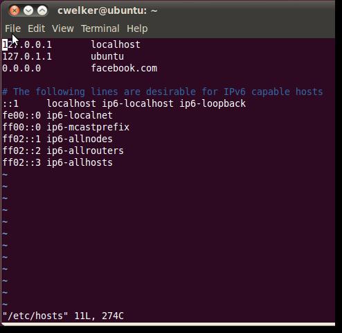 Hosts Vim Ubuntu