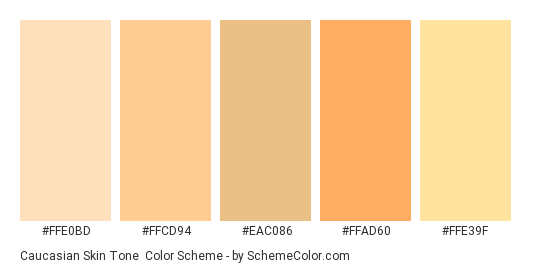 Natural Skin color hex code is #E3B499