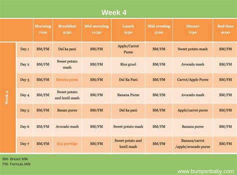 month  feeding schedule  printable food charts