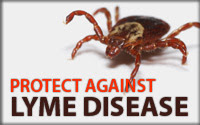 Residents Urged to Consider Lyme Disease Prevention This Summer