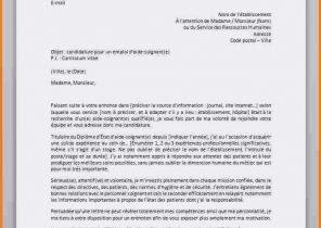 Lettre De Motivation Responsable Rayon Leclerc - Semerbak d