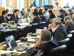 The United Nations asks the Japanese government to respect Okinawan people's opposition against the Henoko relocation plan