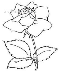 çiçekler Boyama Sayfaları Sanat Axipixde