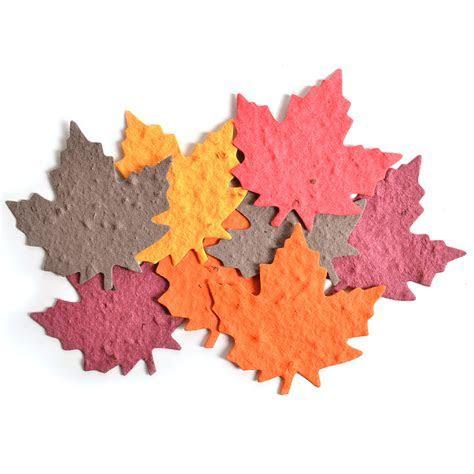 Seed Paper Shape Packs ? Maple Leaf Shapes ? 25 Shapes