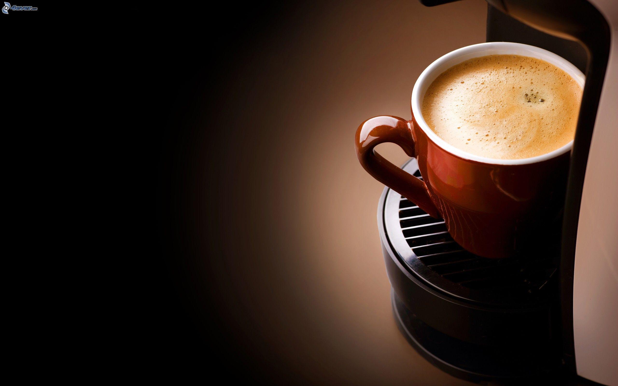 Download 460+ Wallpaper Lucu Cafe Gratis Terbaik
