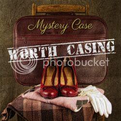 Ms Mystery Case