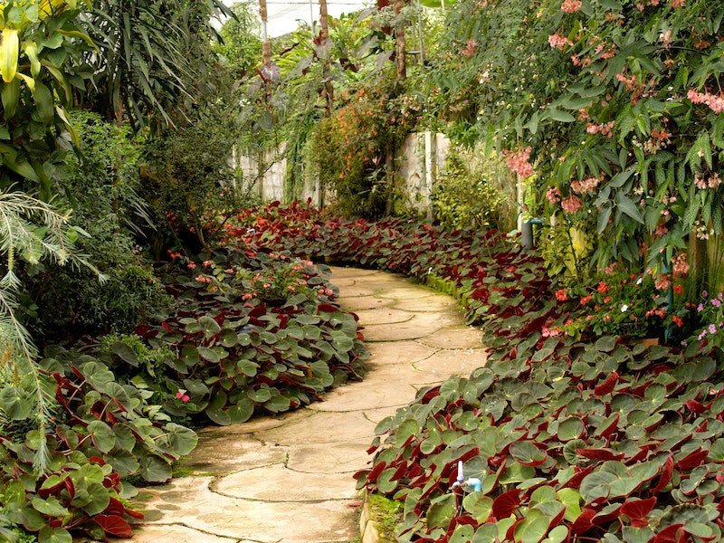 Simple Garden Landscaping Ideas That You Should Know