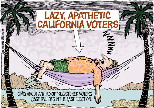 Image result for california cartoons