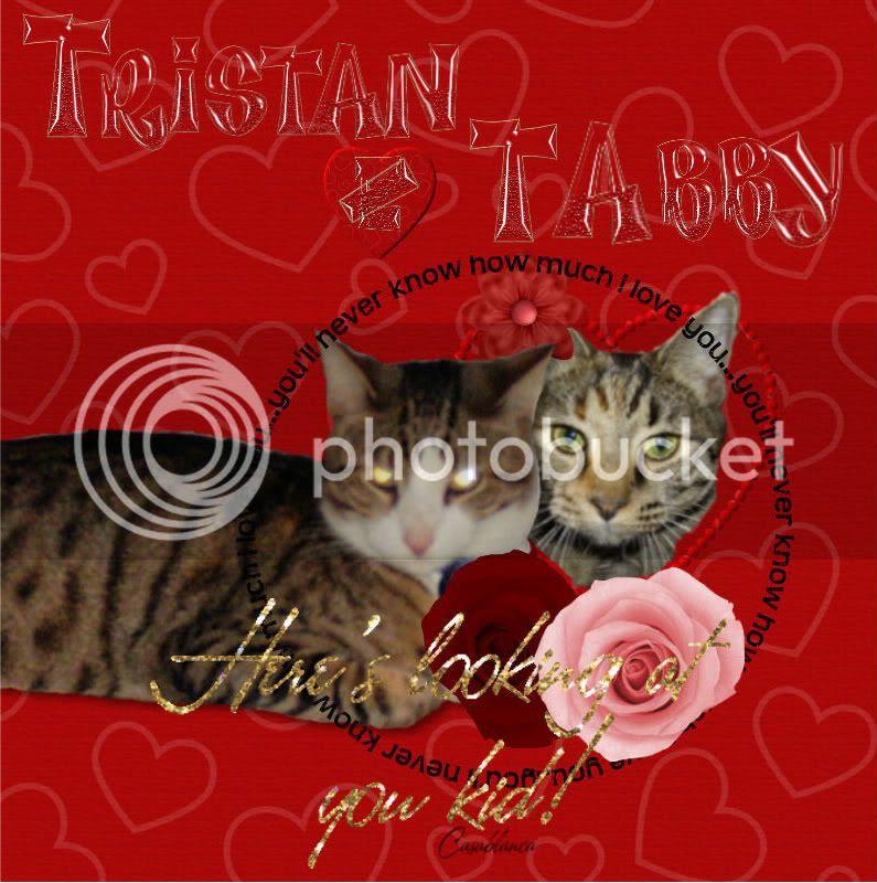 Tristan's Valentine to T'Abby