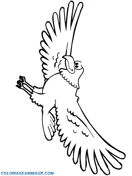 Coloriage Oiseau Qui Vole à Imprimer