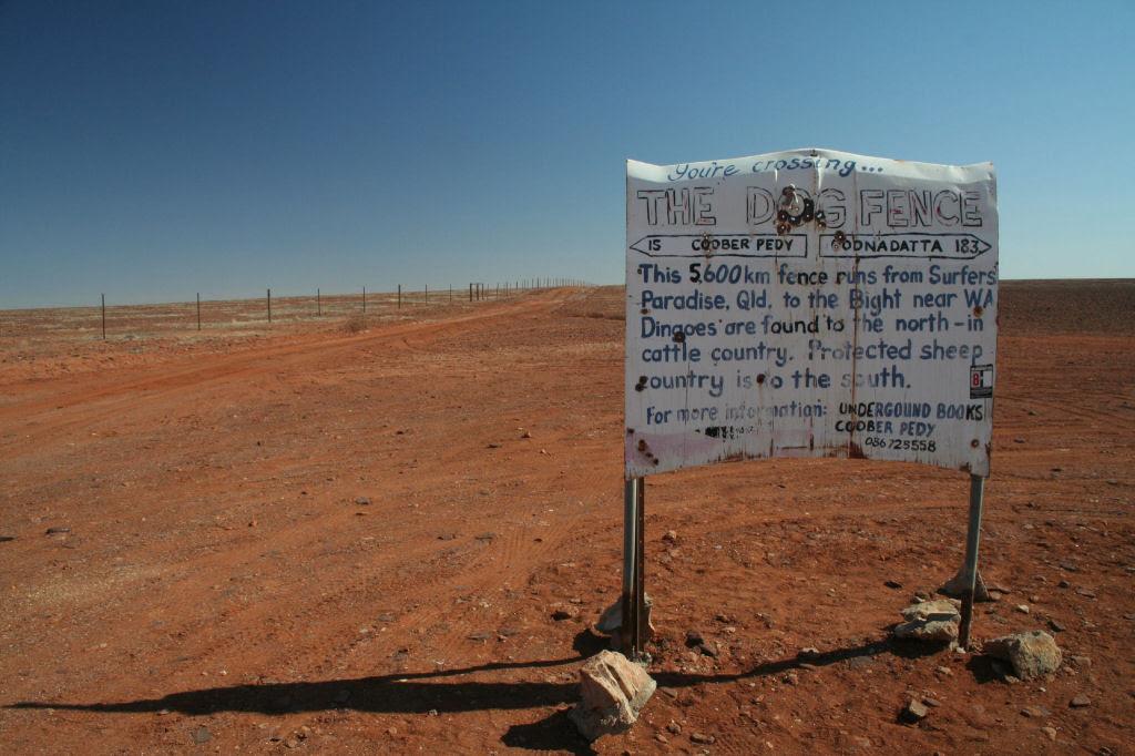 A praia de 150 quilômetros de extensão, na Austrália 08