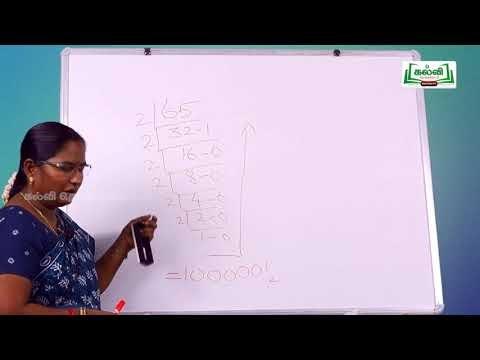 11th Computer Applications எண் முறைகள் பாடம் 2 Kalvi TV