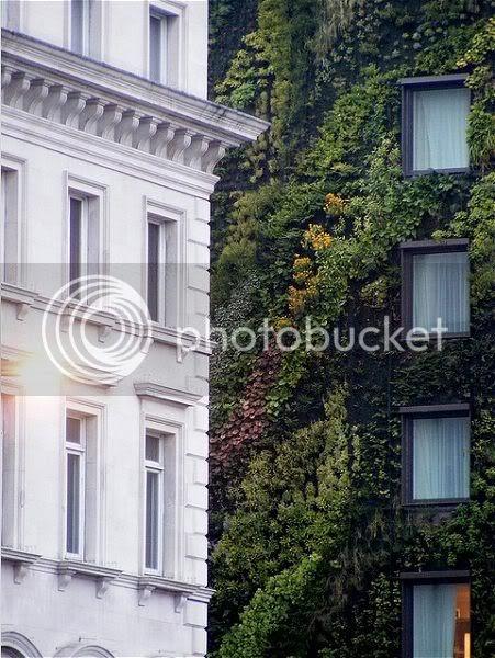 Hotel Londra Venere