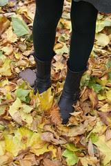 autumn in zwolle