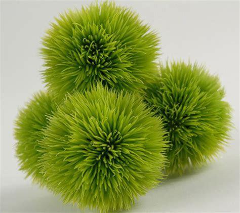 4 Green Allium Grass Balls 2.5in
