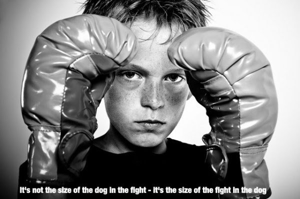Its Not The Size Of The Dog In The Fight Its The Size Of The