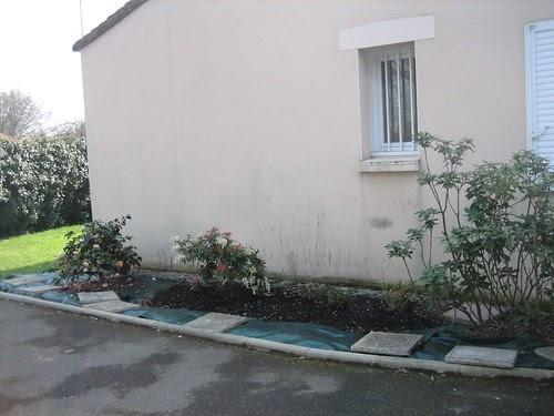 du japon dans un jardin phase 2 2 reprise du massif de. Black Bedroom Furniture Sets. Home Design Ideas