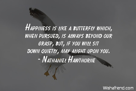 Happiness Is Like A Butterfly Nathaniel Hawthorne Quote