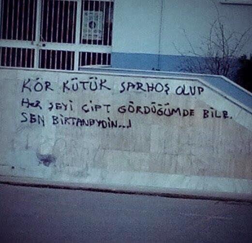 duvar_yazilari_komik_manali_yaratici (38)
