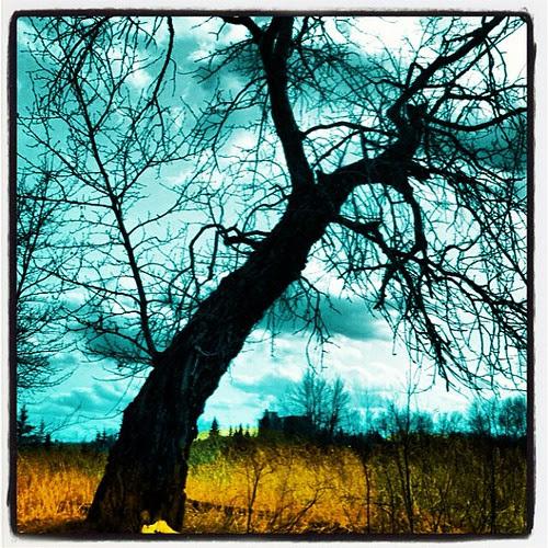 Winter's end by Kate Daniel