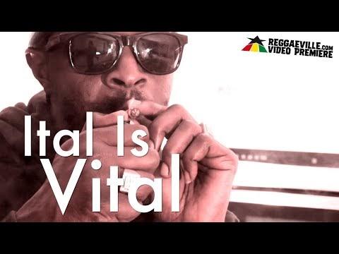 Jah Marnyah - Ital Is Vital.mp3