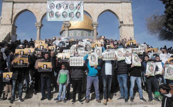 הפגנת תמיכה במחבלים שחוסלו, בהר הבית // צילום: אי.אף.פי