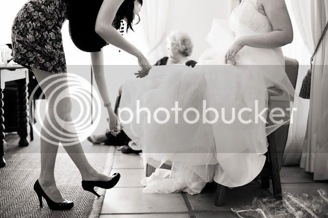 http://i892.photobucket.com/albums/ac125/lovemademedoit/GN_ladybugwedding_010.jpg?t=1296473601