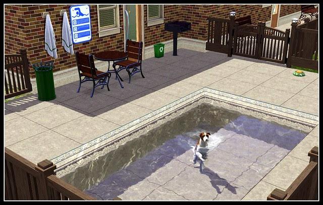 Doggie Pool