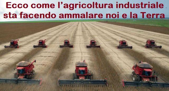 Risultati immagini per La produzione agricola uccide la vita sul pianeta