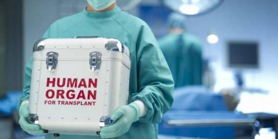 traficos organos