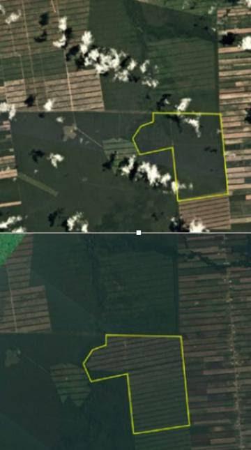 Cambios en el mismo pedazo de tierra cerca de San José (Bolivia) en los últimos meses. Arriba, en enero. Abajo, en abril.