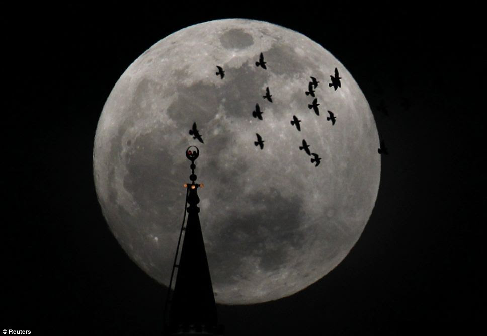 Holy night: The brighter than normal moon was clear for all to see in Amman as a flock of birds flew over a mosque