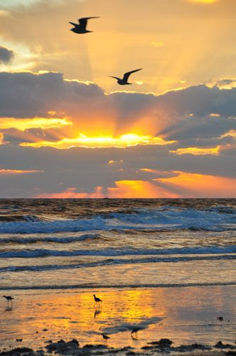 Sunrise beach in Florida
