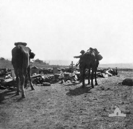 File:AWM A05317 3rd New South Wales Bushmen Elands River 1901.jpg