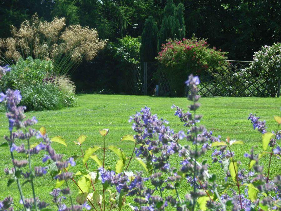jcgardendesign: Garden Design Questionnaire
