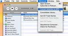 Convert MP4 audio to MP3 - step 9