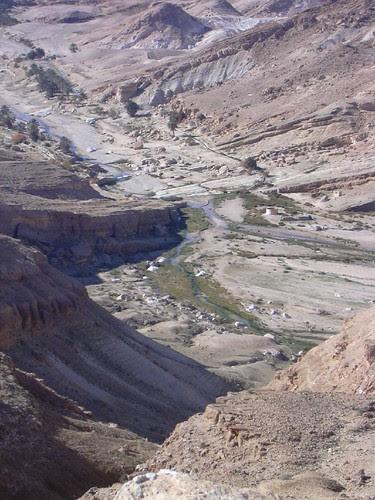 Imatges del desert III
