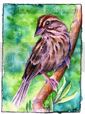 Inquisitive ACEO