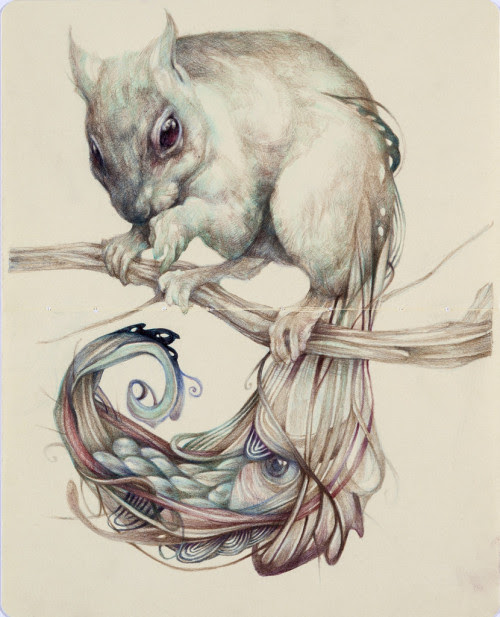 red-lipstick:  Marco Mazzoni (b. 1982, Tortona, Italy) - The Chemical Squirrel, 2013 Drawings: Colored Pencils, Pen on Moleskine  INTERESTING PICTURE. IS THERE A FISH IN THE SQUIRREL'S TAIL? I CAN'T FIGURE IT OUT.