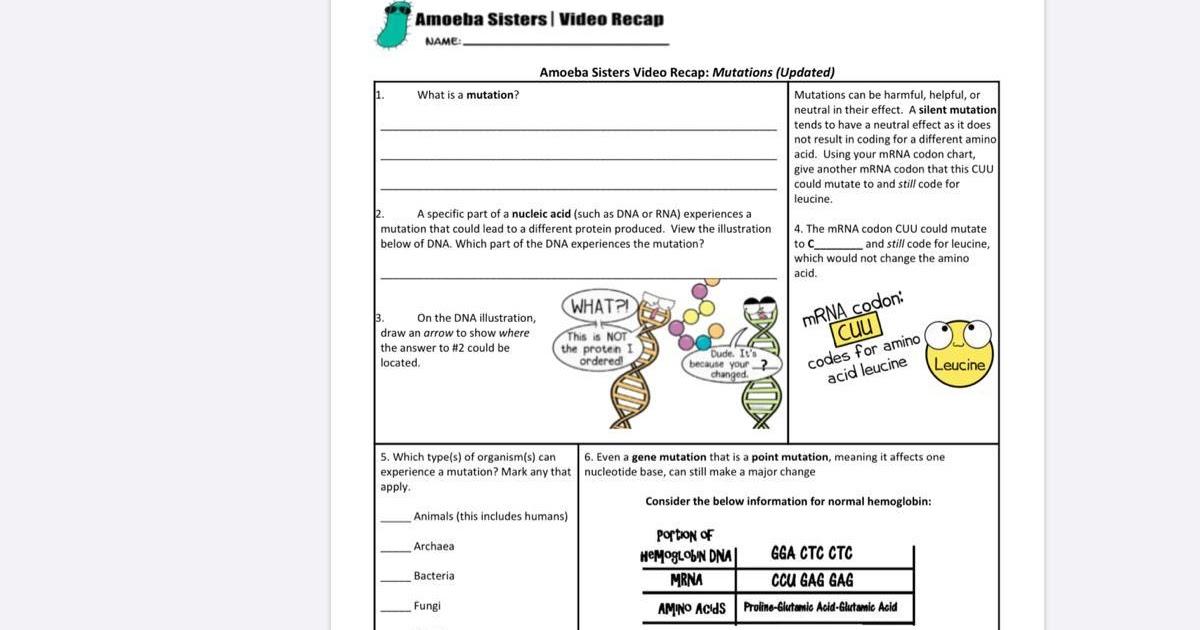 Amoeba Sisters Alleles And Genes Worksheet - Https ...