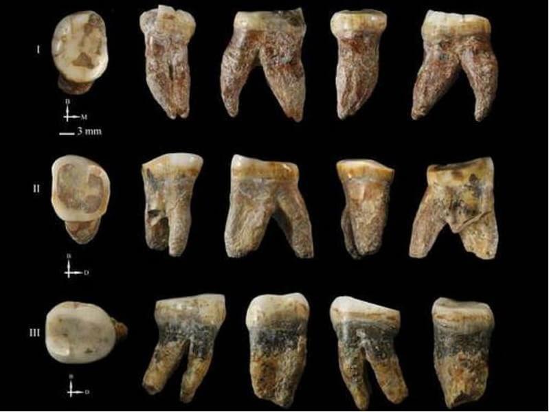 dentes milhares de anos atras