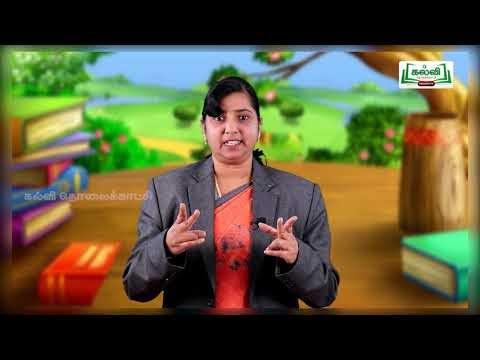 4th English  Grammar Conjunction Unit Part 17  EM Kalvi TV
