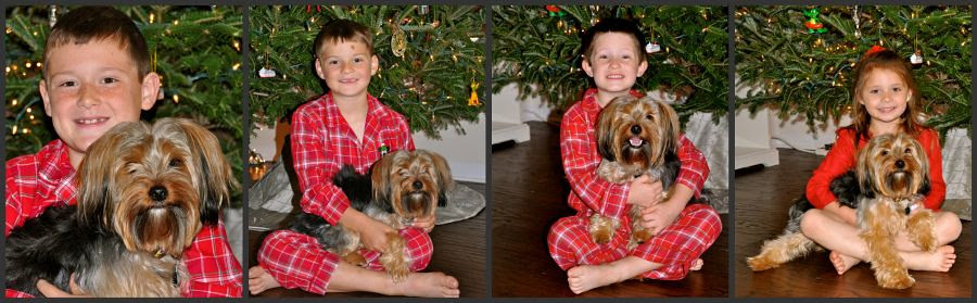 kiddos with the puppy