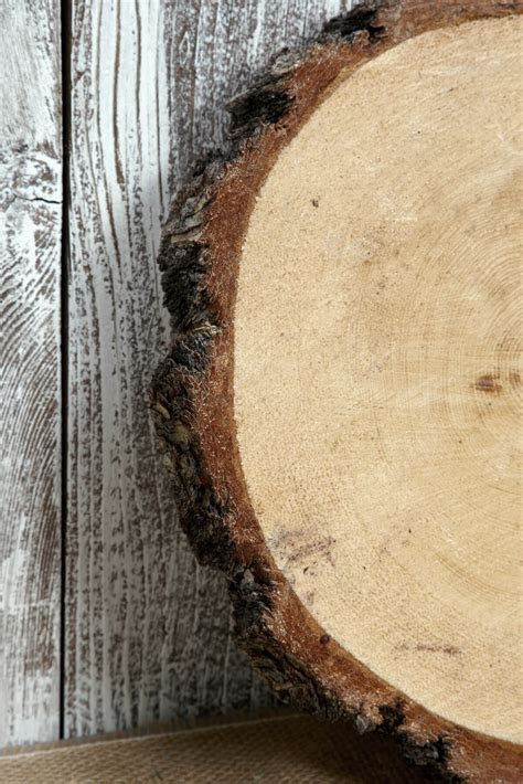 "Tree Slabs Round Natural Wood 9 14"" and 2 2.5 Thick"